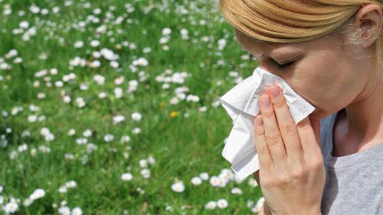 Allergies can mask the pain of toothache.